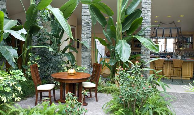 slideshow-interior-atrium3