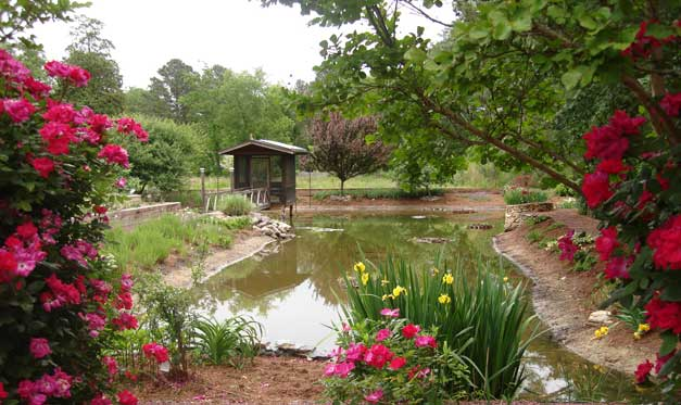 slideshow-pond1
